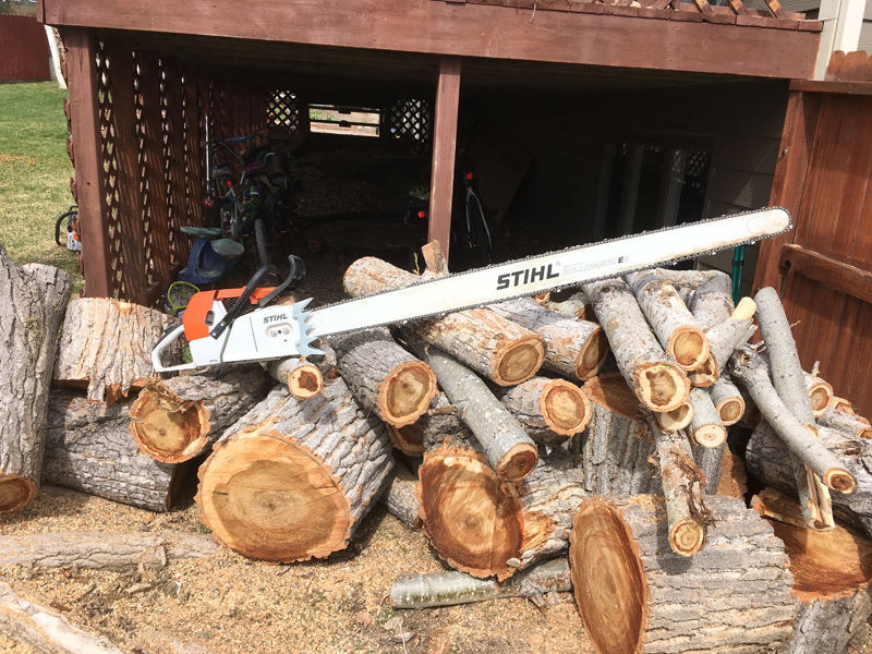 How Can You Find a Reliable Tree Removal Service in Pace or Pea Ridge, FL?